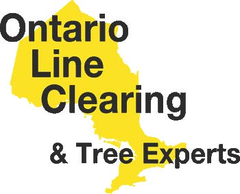Ontario Line Clearing